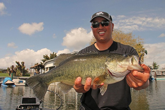 EverStart pro Ken Mah shows off a nice Cal Delta largemouth. (Photo by David A. Brown)